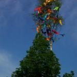 Dorfmaibaum  2012